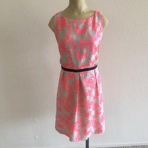 Ann Taylor LOFT Dress size 10!
